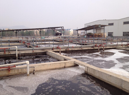 Tannery effluents treatment